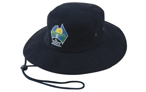 Brushed Heavy Sports Twill Hat (4250)